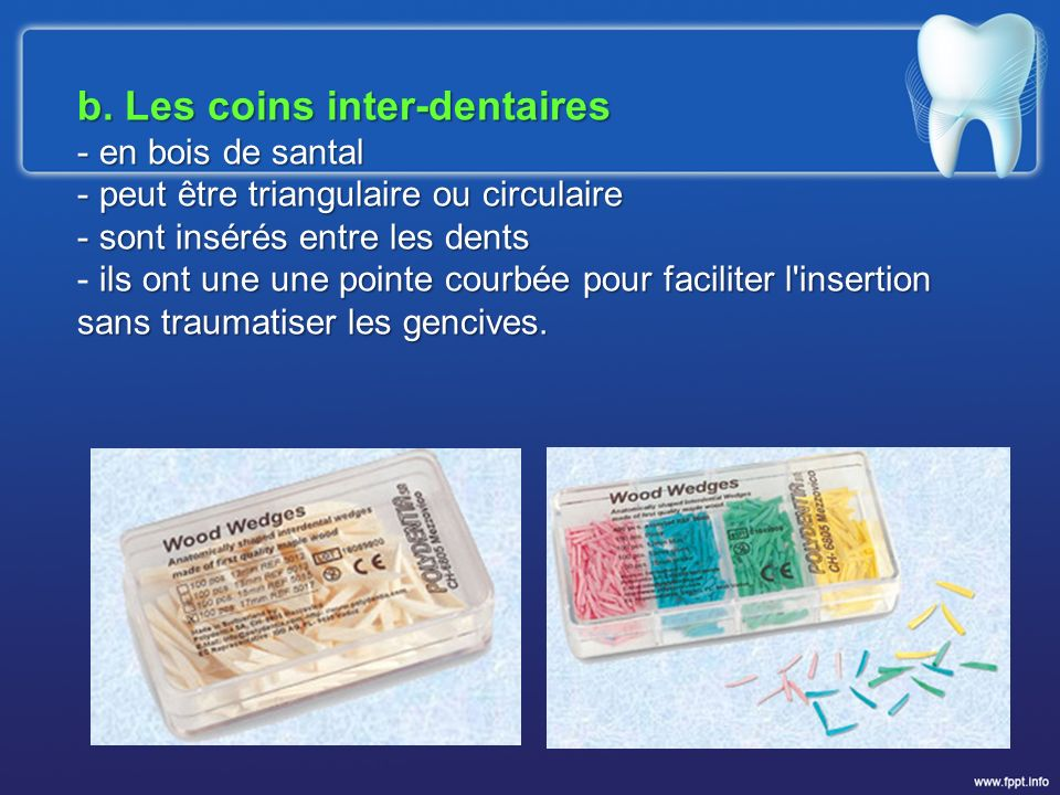 b. Les coins inter-dentaires