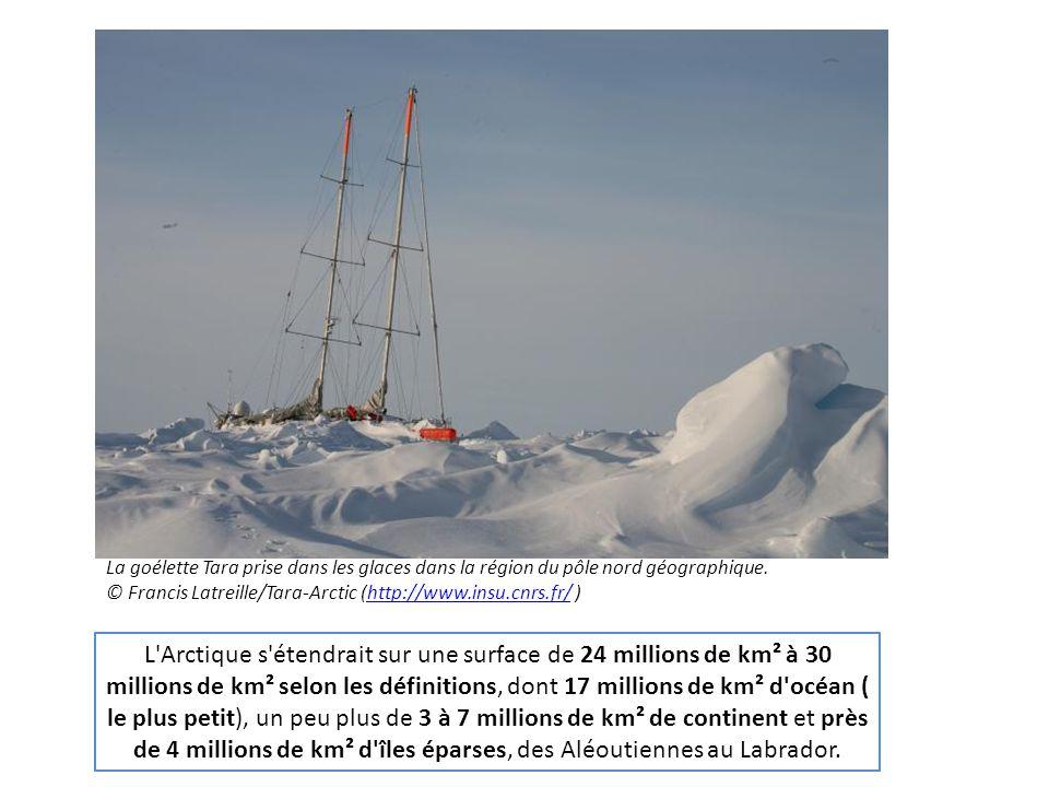 La goélette Tara prise dans les glaces dans la région du pôle nord géographique.