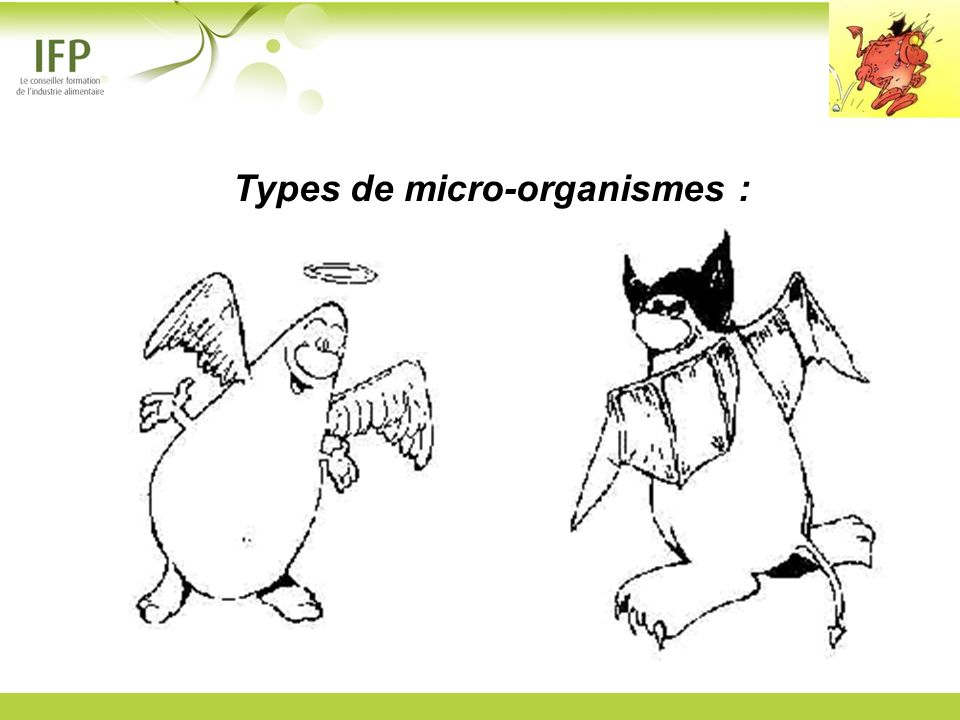 Types de micro-organismes :