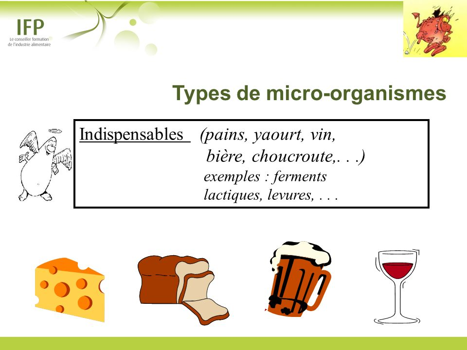 Types de micro-organismes