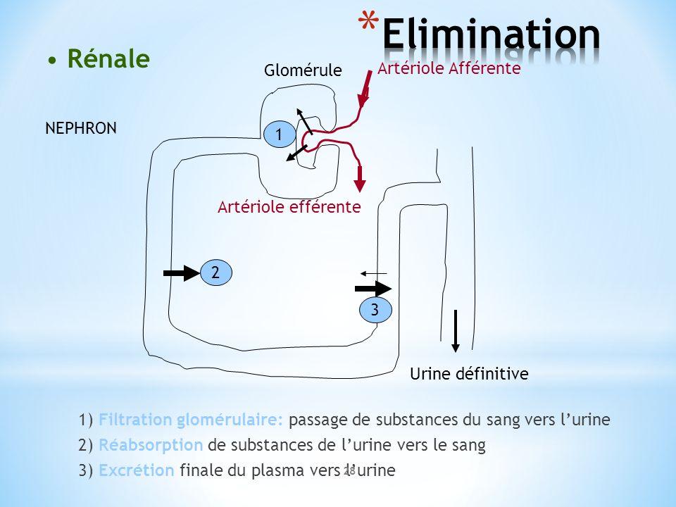Elimination Rénale Glomérule Artériole Afférente NEPHRON 1