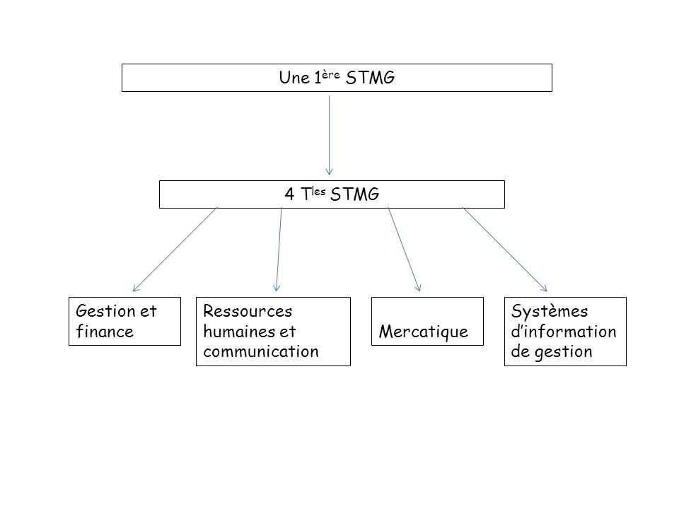 Une 1ère STMG 4 Tles STMG. Gestion et finance. Ressources humaines et communication. Mercatique.