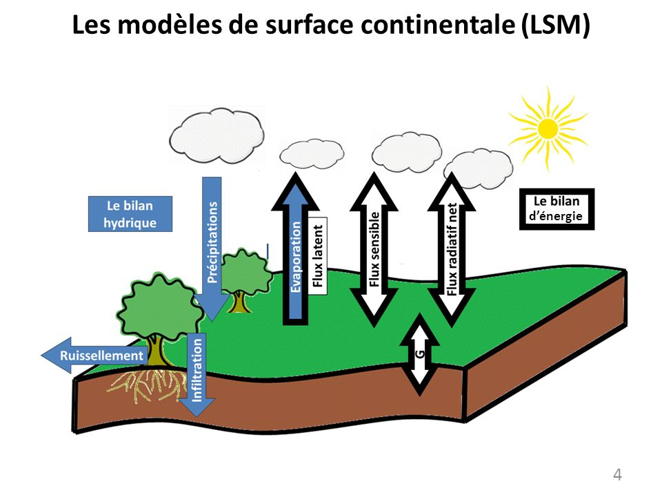 Les modèles de surface continentale (LSM)