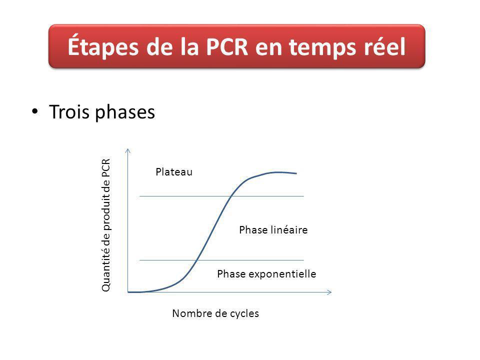 Étapes de la PCR en temps réel