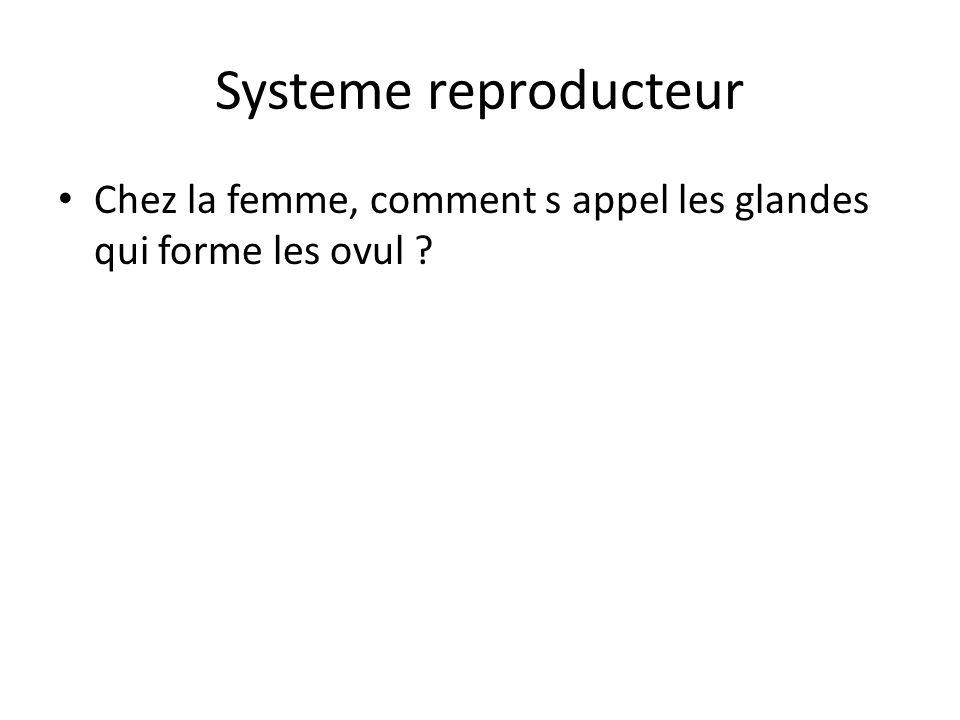 Systeme reproducteur Chez la femme, comment s appel les glandes qui forme les ovul