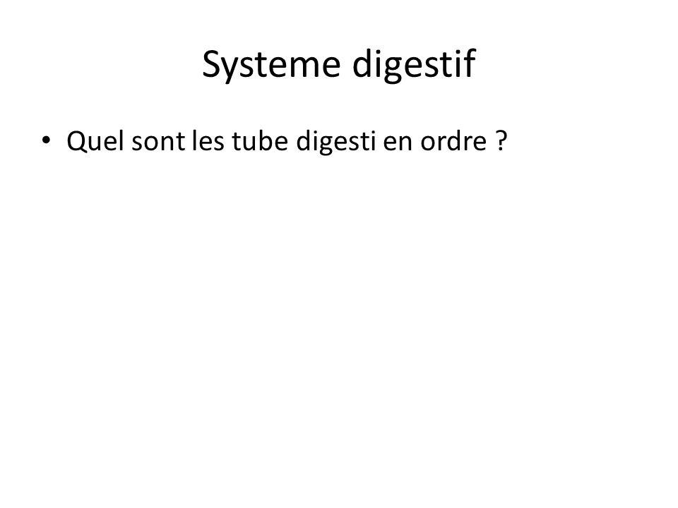Systeme digestif Quel sont les tube digesti en ordre
