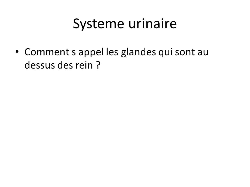 Systeme urinaire Comment s appel les glandes qui sont au dessus des rein