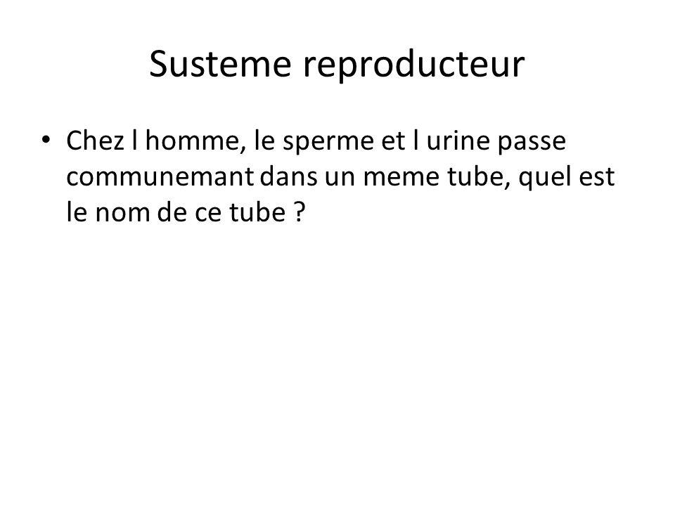 Susteme reproducteur Chez l homme, le sperme et l urine passe communemant dans un meme tube, quel est le nom de ce tube