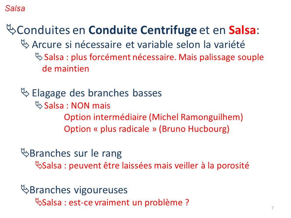 Conduites en Conduite Centrifuge et en Salsa: