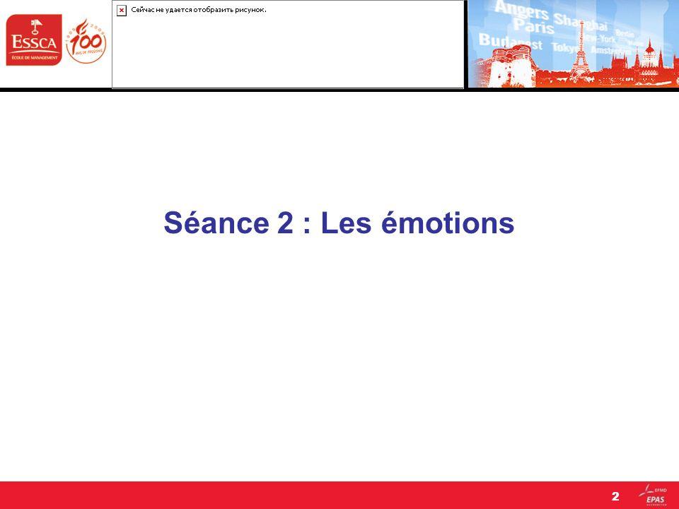 Séance 2 : Les émotions