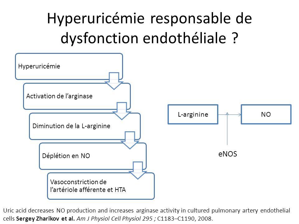 Hyperuricémie responsable de dysfonction endothéliale