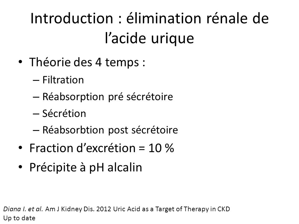 Introduction : élimination rénale de l'acide urique