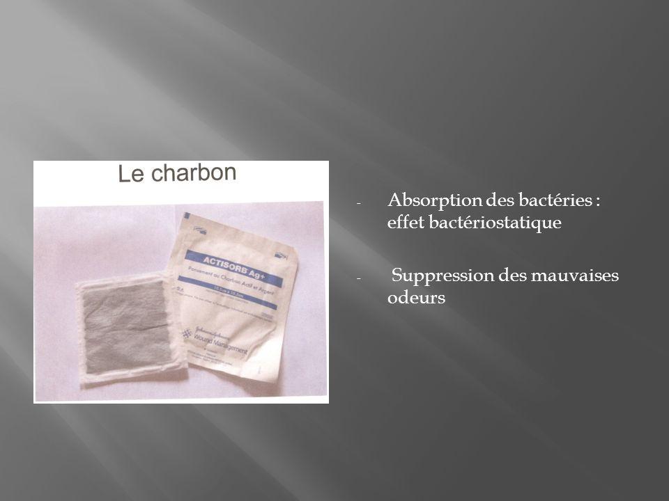 Absorption des bactéries : effet bactériostatique
