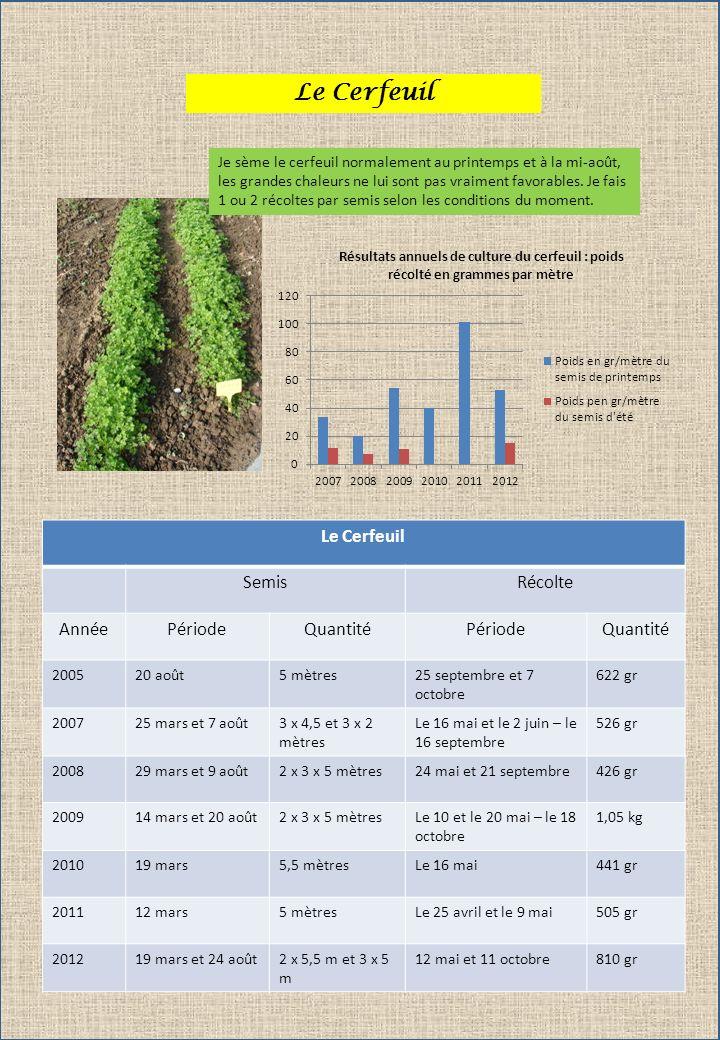 Le Cerfeuil Le Cerfeuil Semis Récolte Année Période Quantité