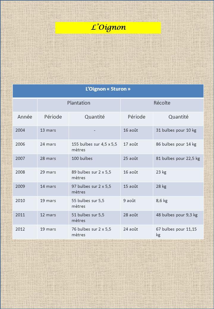 L'Oignon L'Oignon « Sturon » Plantation Récolte Année Période Quantité