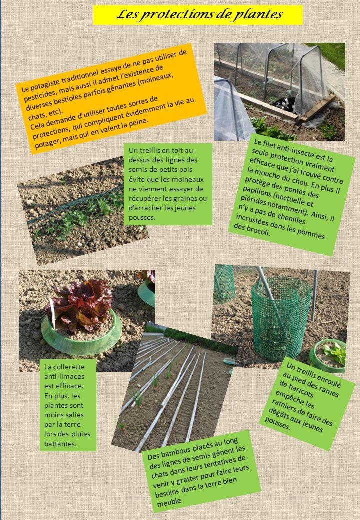 Les protections de plantes