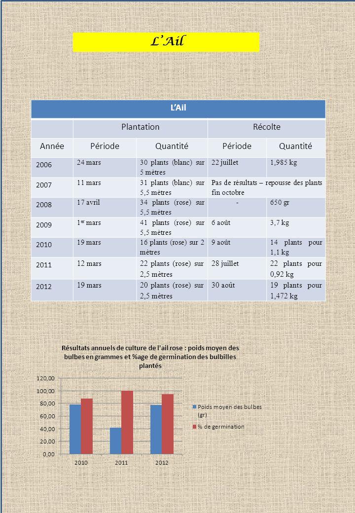 L'Ail L'Ail Plantation Récolte Année Période Quantité 2006 2007 2008