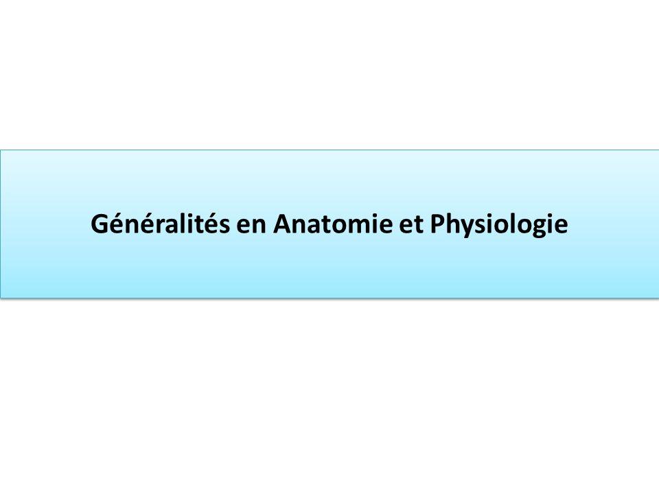 Généralités en Anatomie et Physiologie