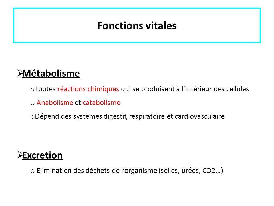 Fonctions vitales Métabolisme Excretion Anabolisme et catabolisme