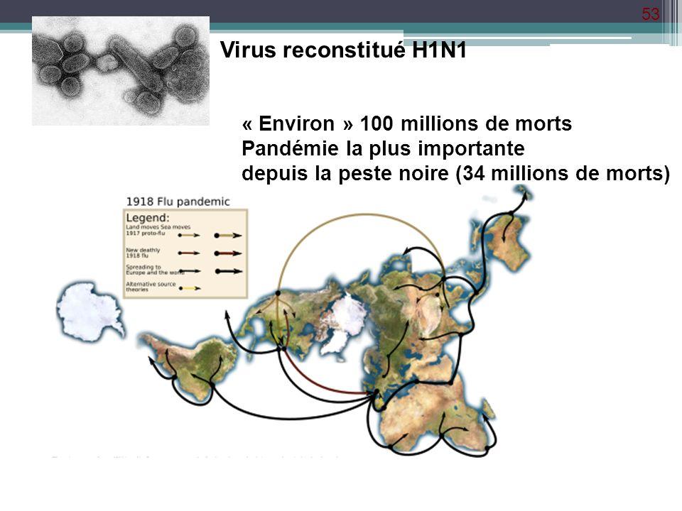 Virus reconstitué H1N1 « Environ » 100 millions de morts