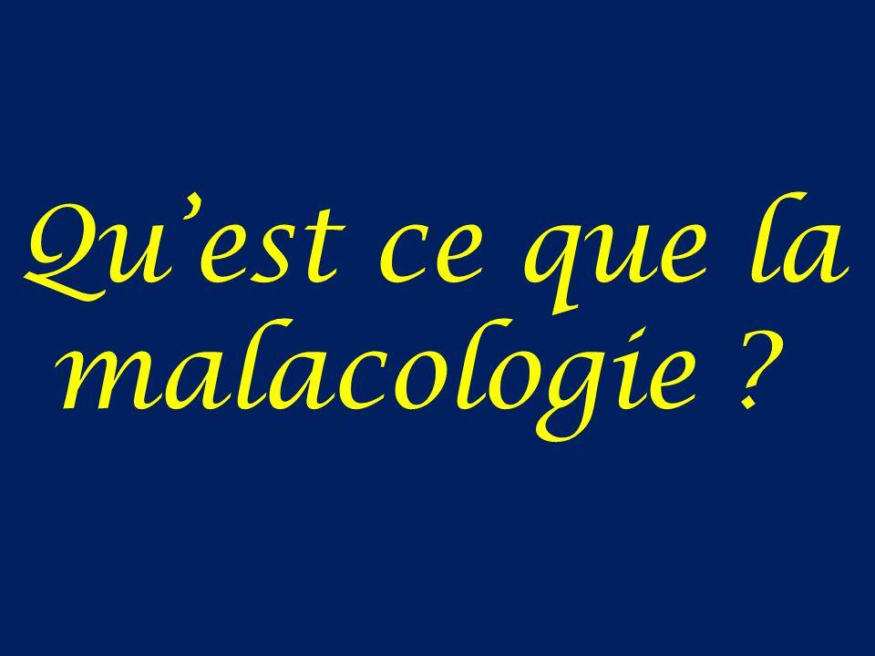 Qu'est ce que la malacologie
