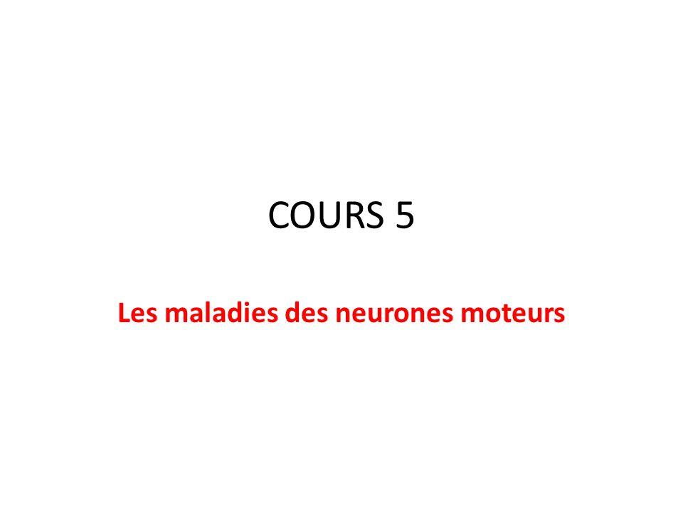 Les maladies des neurones moteurs