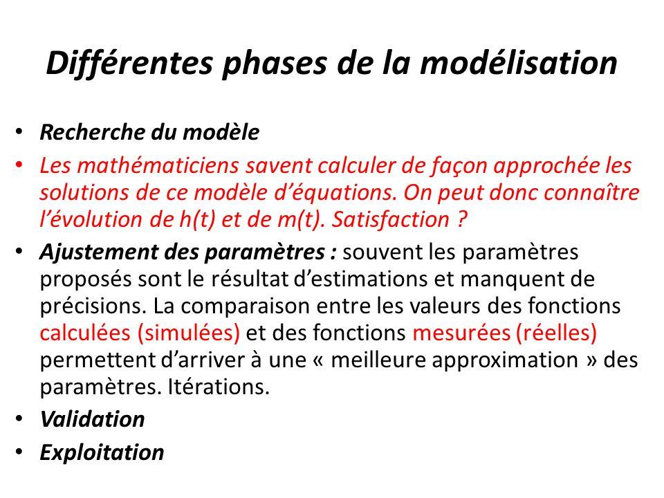 Différentes phases de la modélisation