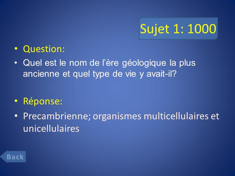 Sujet 1: 1000 Question: Réponse: