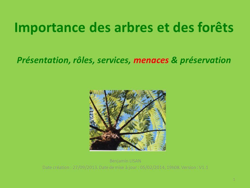 Importance des arbres et des forêts Présentation, rôles, services, menaces & préservation