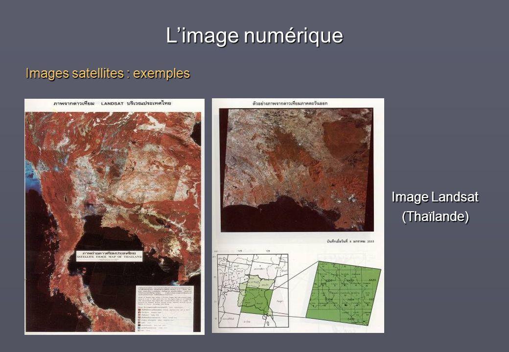 L'image numérique Images satellites : exemples Image Landsat