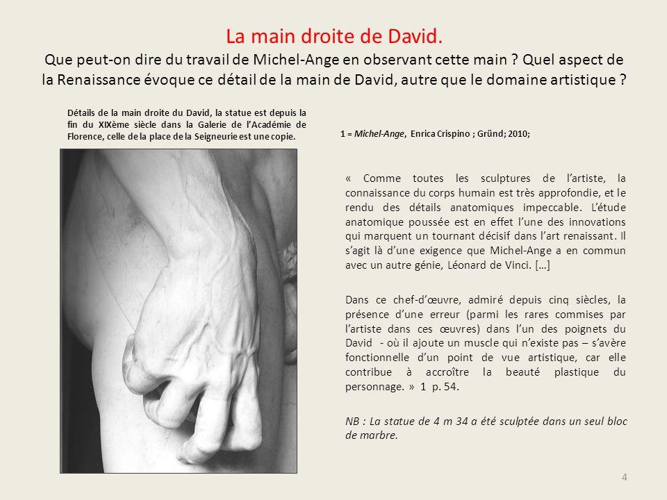 La main droite de David. Que peut-on dire du travail de Michel-Ange en observant cette main Quel aspect de la Renaissance évoque ce détail de la main de David, autre que le domaine artistique