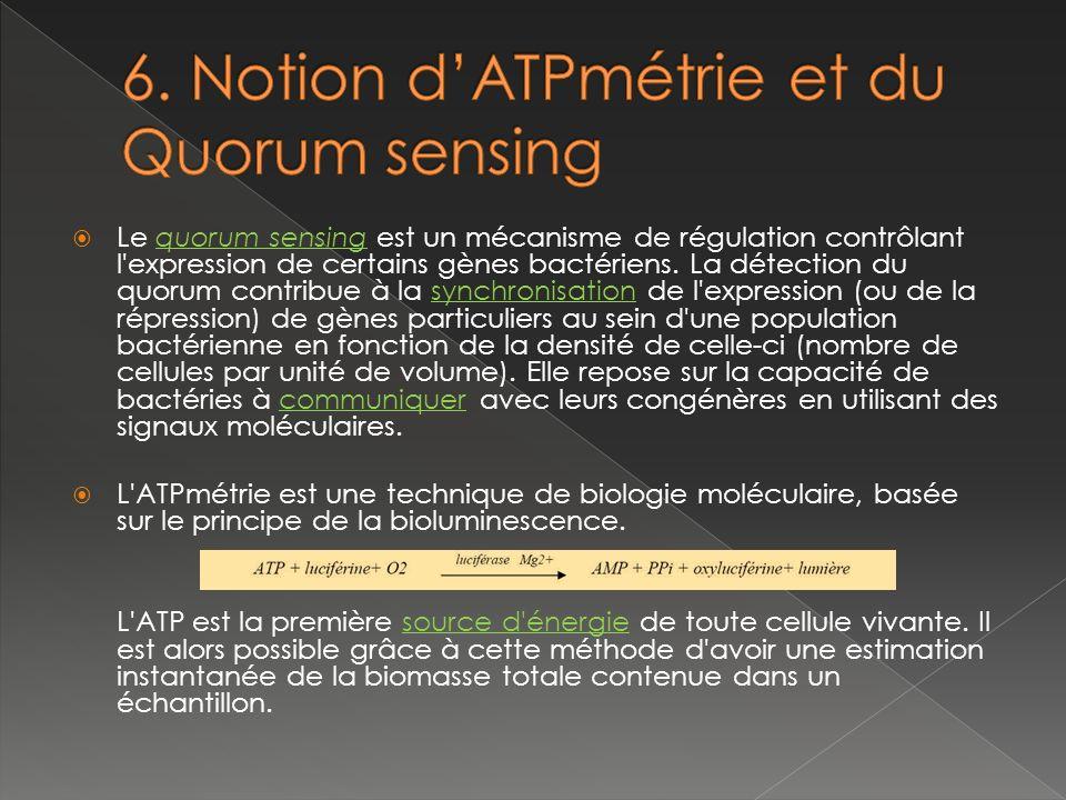 6. Notion d'ATPmétrie et du Quorum sensing