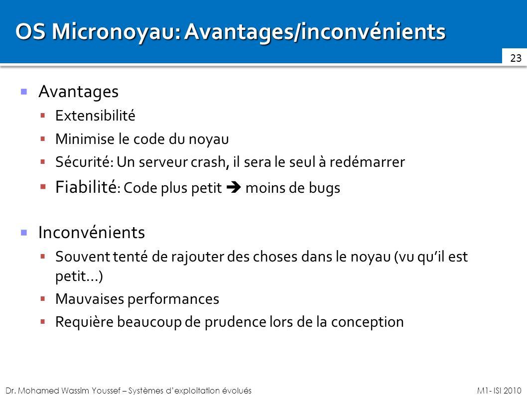 OS Micronoyau: Avantages/inconvénients