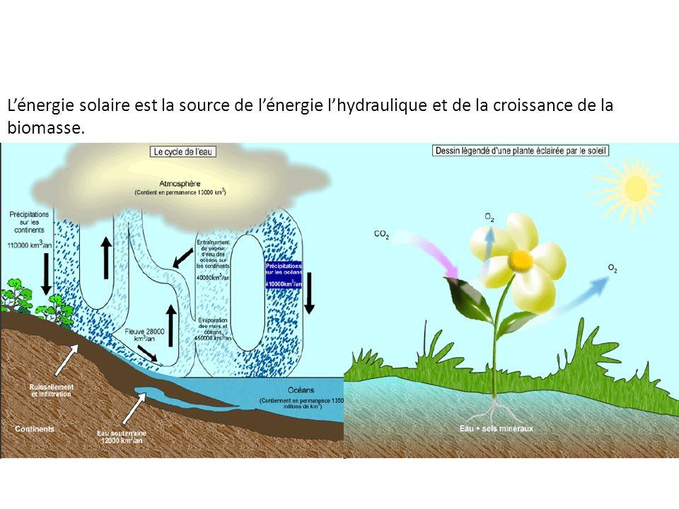 L'énergie solaire est la source de l'énergie l'hydraulique et de la croissance de la biomasse.