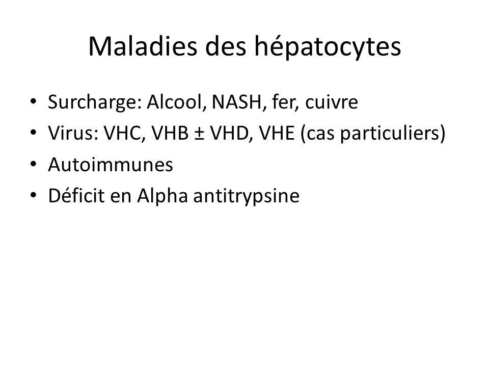 Maladies des hépatocytes