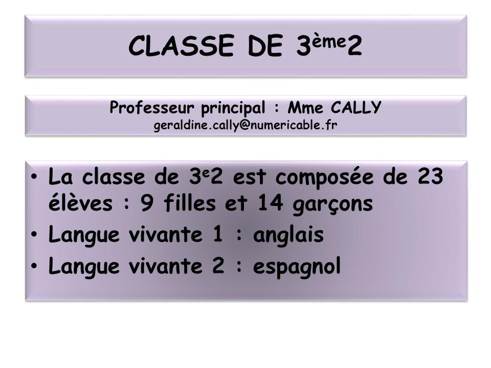 Professeur principal : Mme CALLY