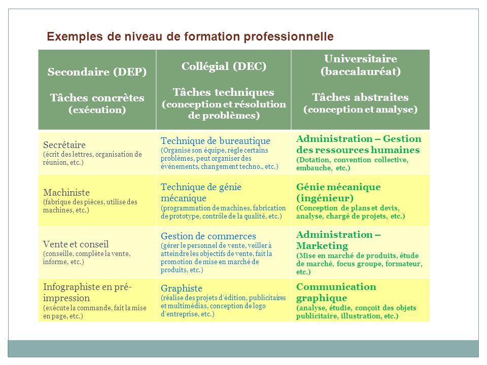 Exemples de niveau de formation professionnelle