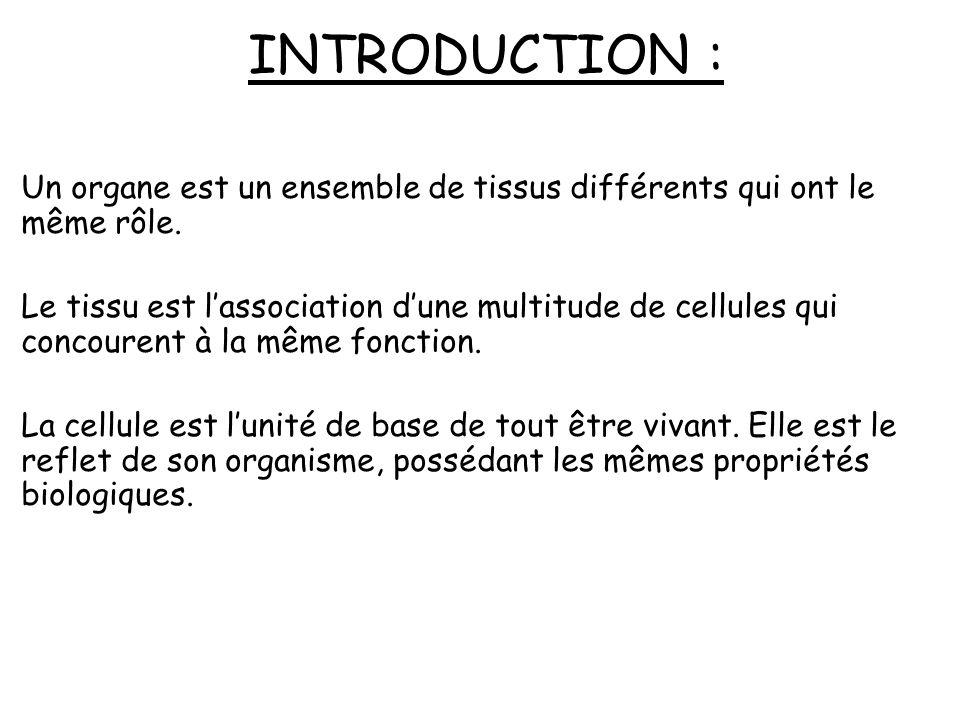 INTRODUCTION : Un organe est un ensemble de tissus différents qui ont le même rôle.