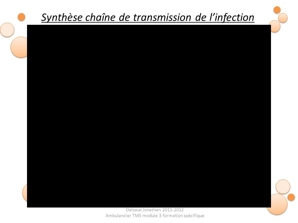 Synthèse chaîne de transmission de l'infection