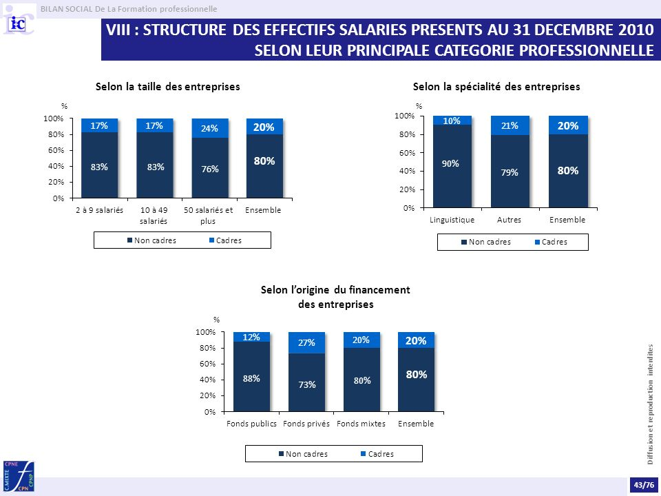 VIII : STRUCTURE DES EFFECTIFS SALARIES PRESENTS AU 31 DECEMBRE 2010 SELON LEUR PRINCIPALE CATEGORIE PROFESSIONNELLE