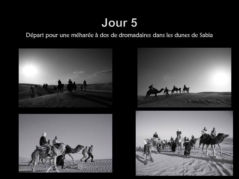 Jour 5 Départ pour une méharée à dos de dromadaires dans les dunes de Sabia
