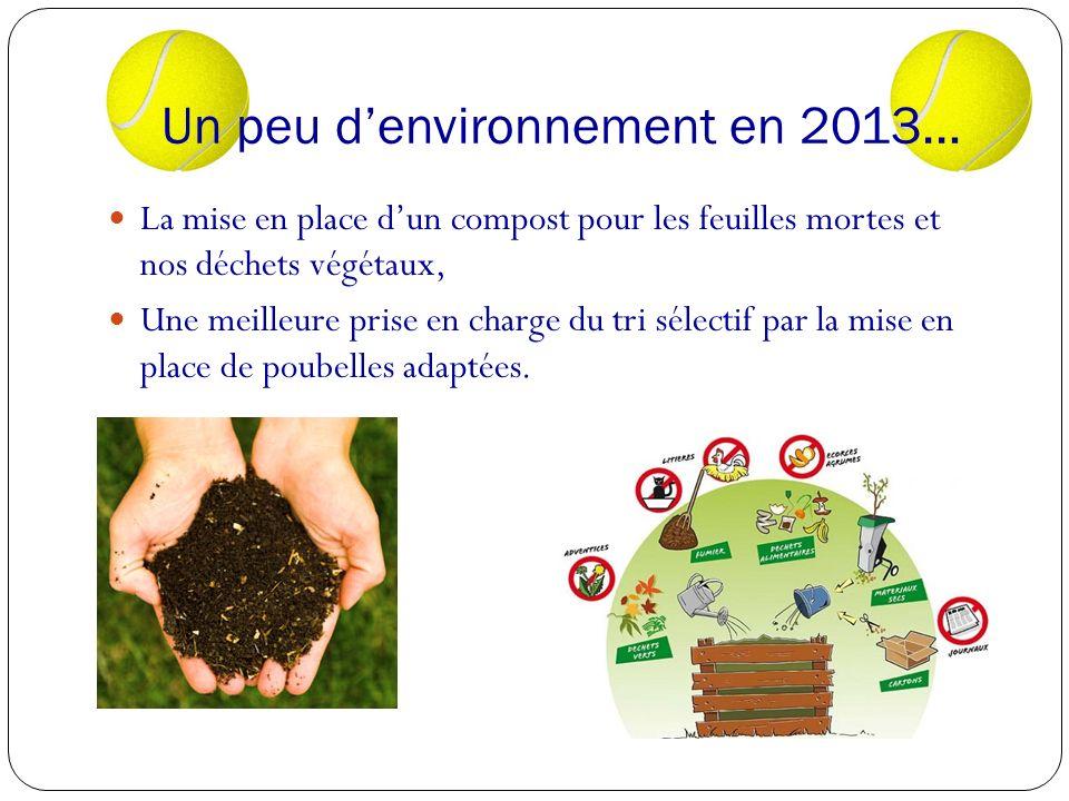 Un peu d'environnement en 2013…