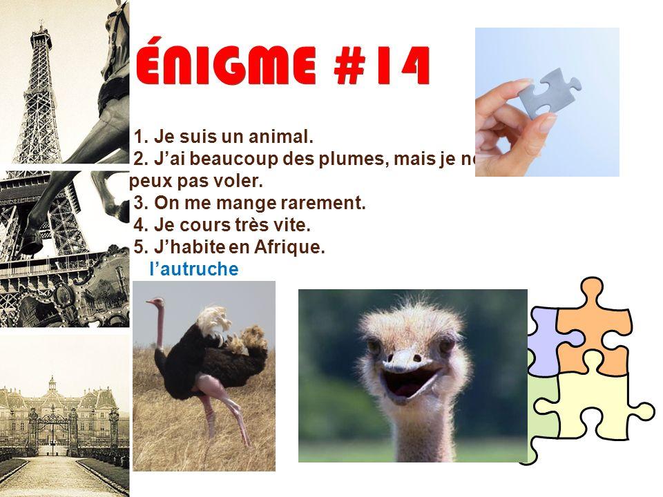ÉNIGME #14 1. Je suis un animal.