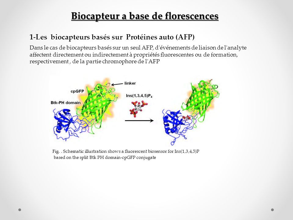 Biocapteur a base de florescences