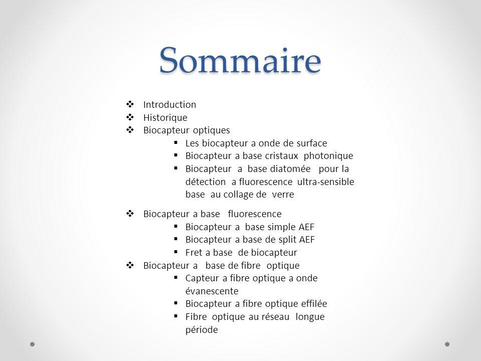 Sommaire Introduction Historique Biocapteur optiques
