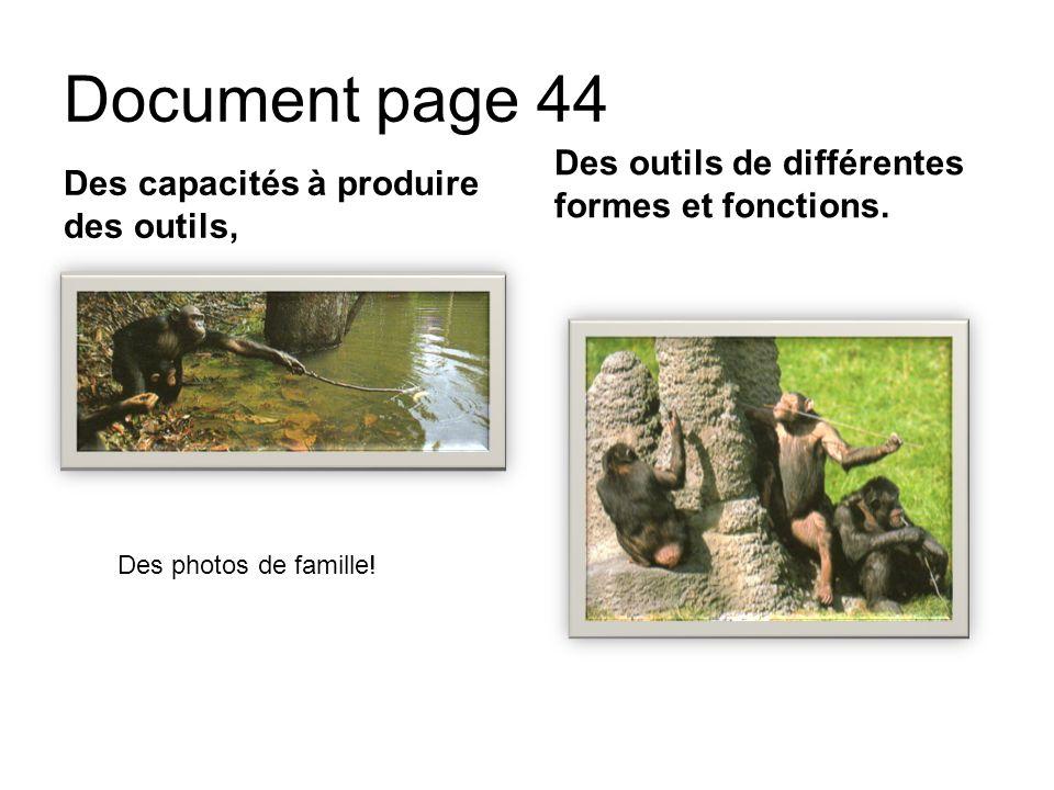 Document page 44 Des outils de différentes formes et fonctions.