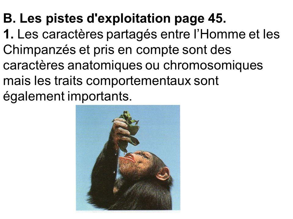 B. Les pistes d exploitation page 45. 1