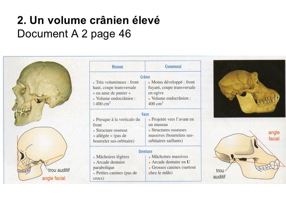 2. Un volume crânien élevé Document A 2 page 46
