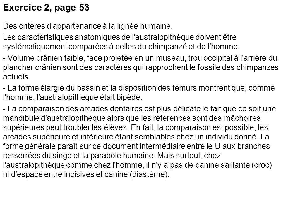 Exercice 2, page 53 Des critères d appartenance à la lignée humaine.