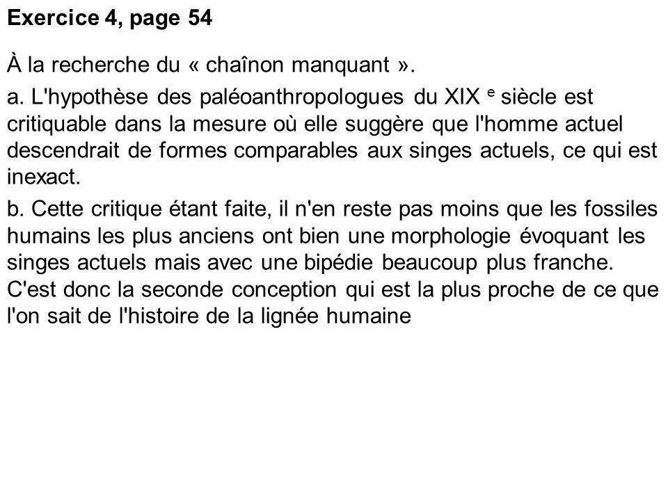 Exercice 4, page 54 À la recherche du « chaînon manquant ».